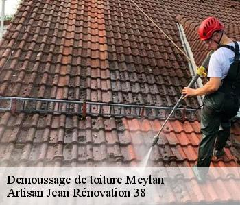 Demoussage de toiture  meylan-38240 JL Rénovation
